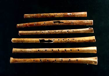 flutes-w