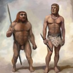 -Neanderthal-Comparison-2